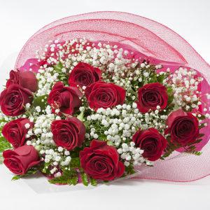 1 DOZEN RED ROSE PRESENTATION BOUQUET