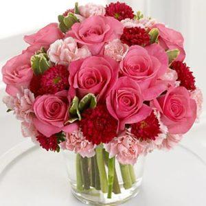 Pink rose & carn